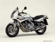 Yamaha XJ 600 S Diversion (reduced effect)