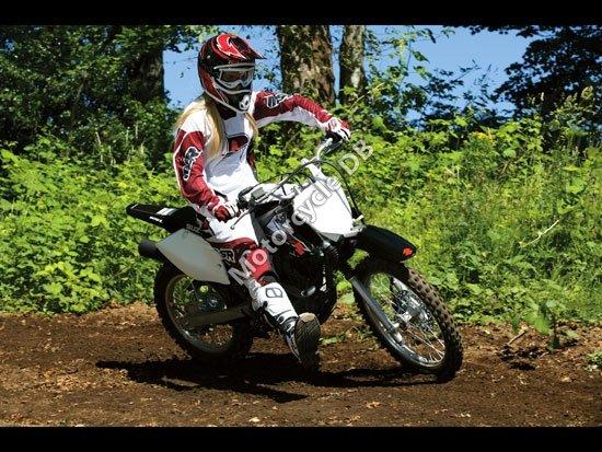 Suzuki DR-Z125L 2010 4420