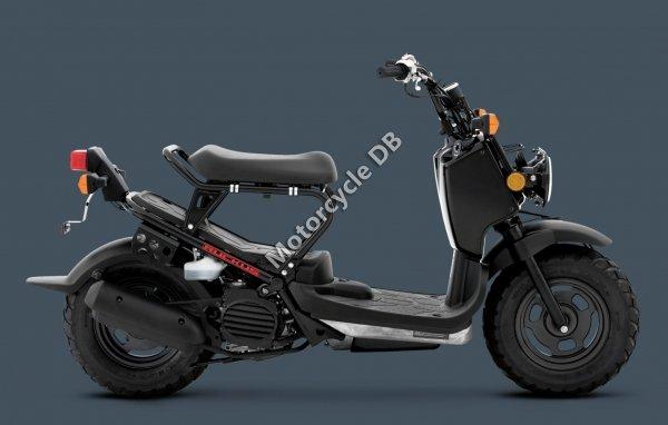 Honda Ruckus 2013 22797