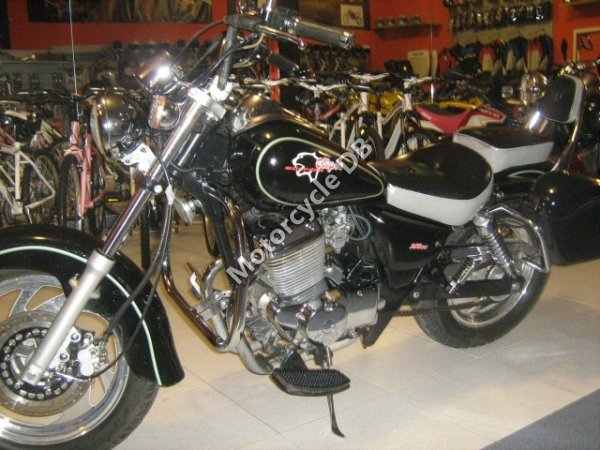 Clipic Custom Guepard  250cc 2009 14189