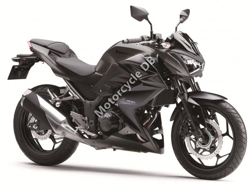 Kawasaki Z300 2015 28864