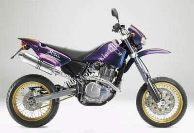 CCM R30 2003 1175