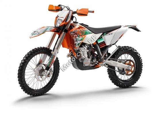 KTM 450 EXC SIXDAYS 2011 4631