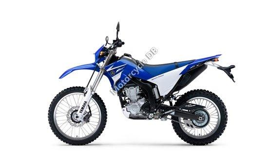 Yamaha WR250R 2009 3860