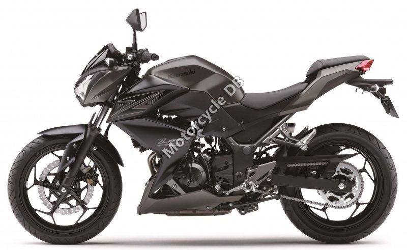 Kawasaki Z300 2017 28873