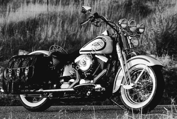 Harley-Davidson Softail Springer 1997 10966