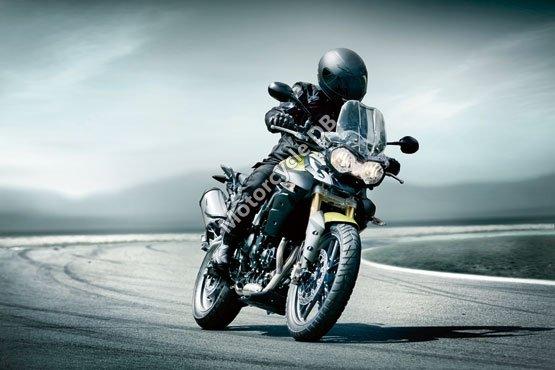 Triumph Tiger 800 2011 4970