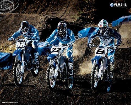 Yamaha YZ250F 2008 5587