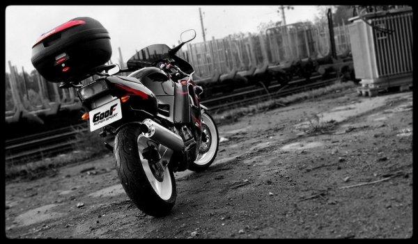 Honda CBR 600 F 1991 81