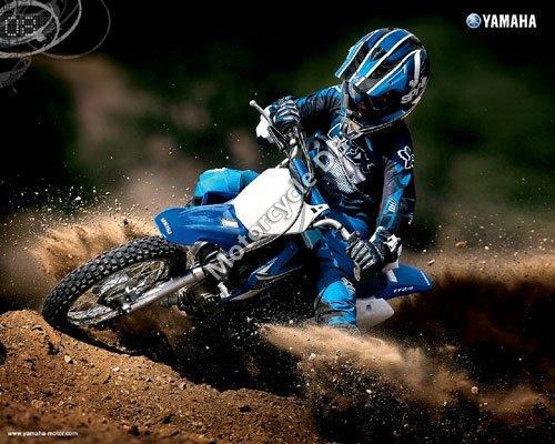 Yamaha TT-R110E 2008 3002