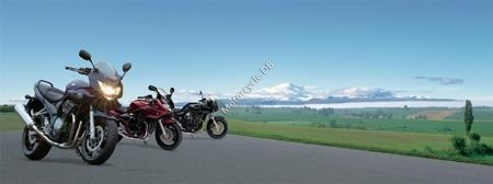 Suzuki Bandit 1200S 2006 5176