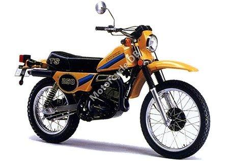 Suzuki TS 250 ER 1981 6596