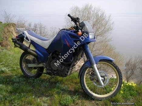 Suzuki DR 600 S (reduced effect) 1985 20770