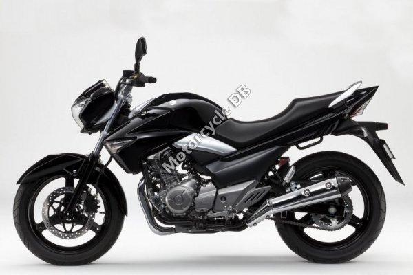 Suzuki GW250 2013 23067