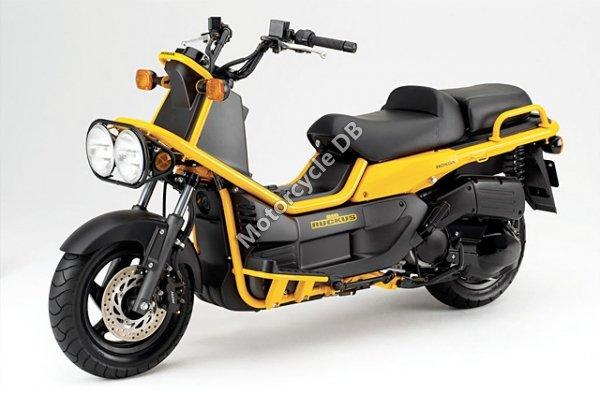 Honda Ruckus 2010 15730