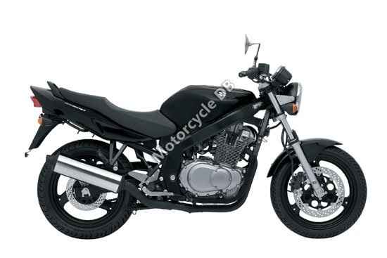 Suzuki GS500 2009 3701